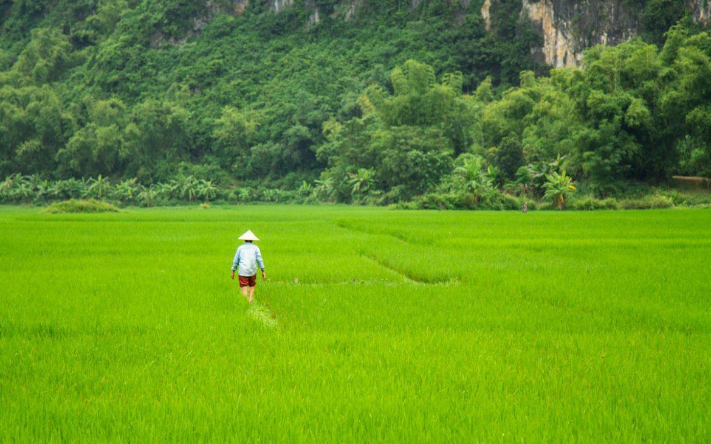 Rundreisen Vietnam